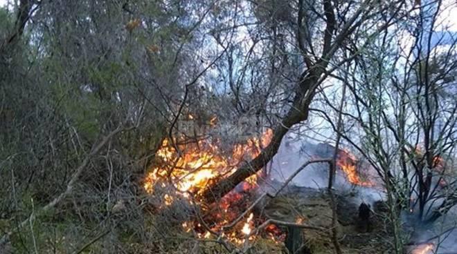 riviera24 - incendio boschivo montegrazie generica