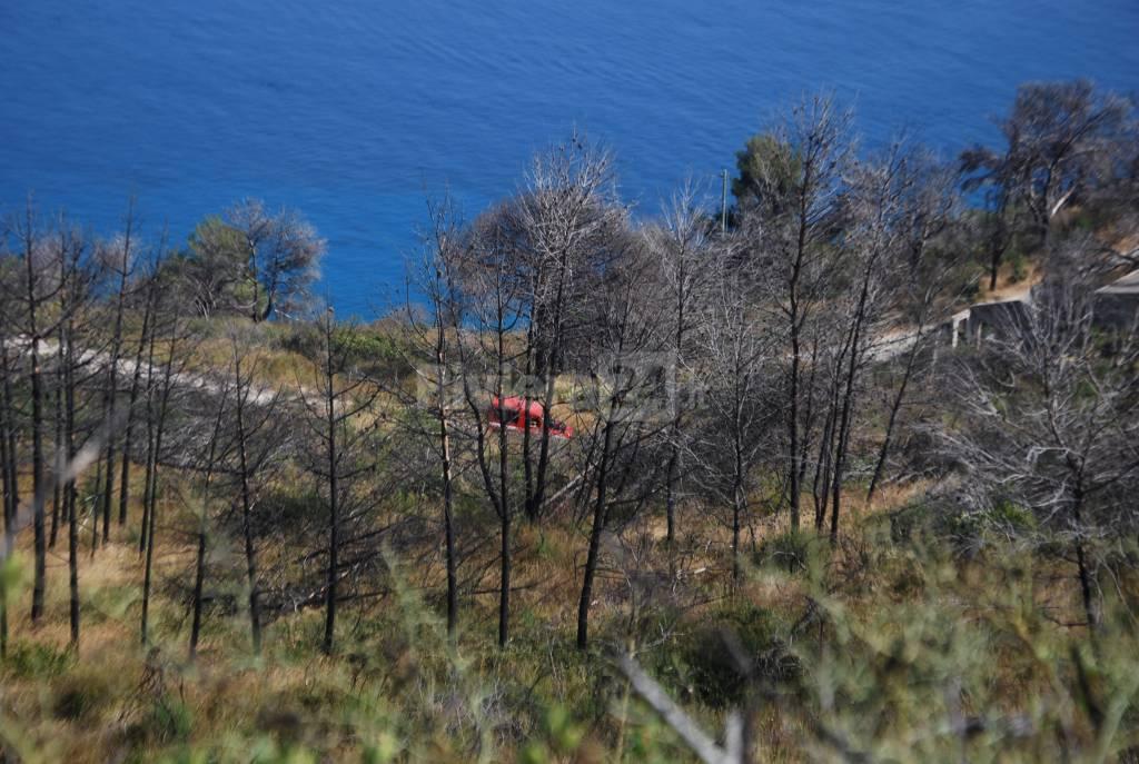 incendio boschivo montenero