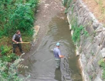 pesca fiumi