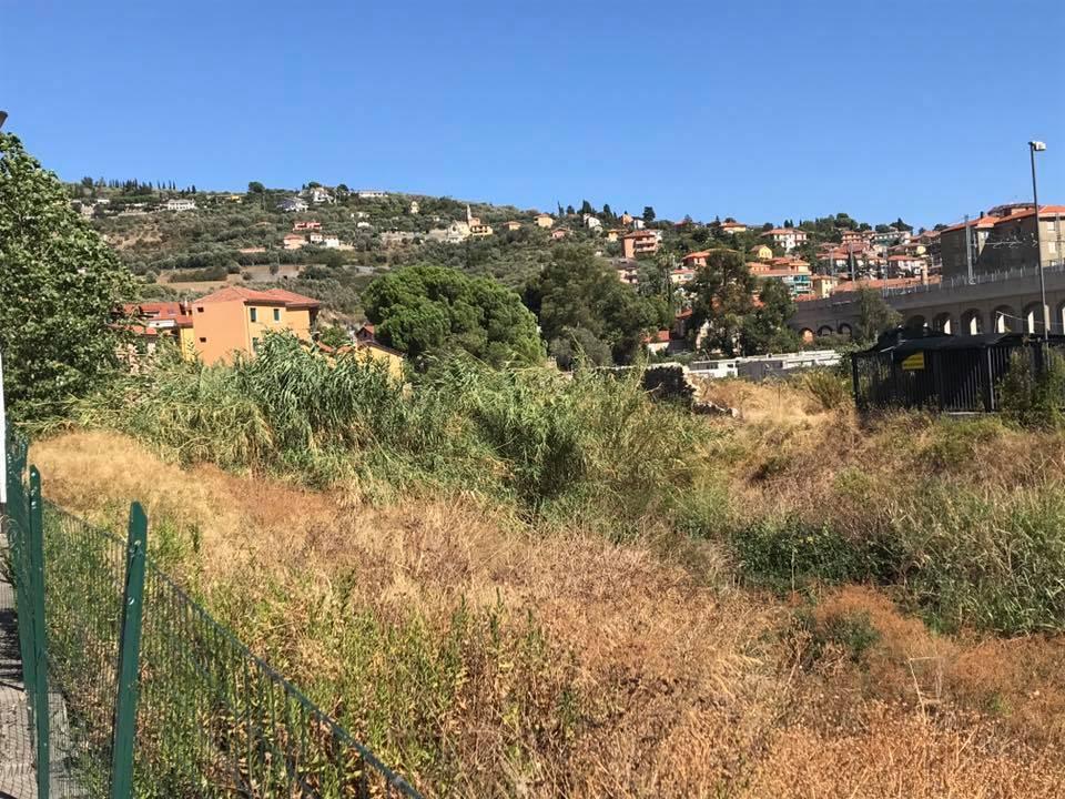 rio oliveto imperia