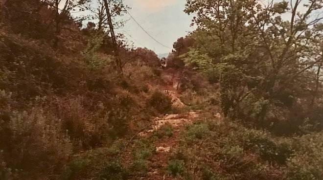 riviera24 - Frana in zona ex Cava Bianchi a Sanremo