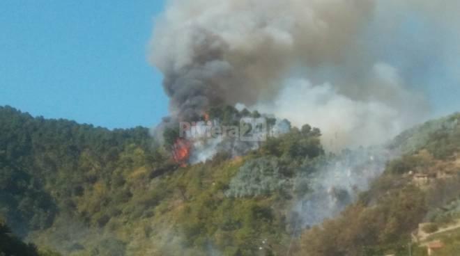 riviera24 - incendio boschivo ceriana
