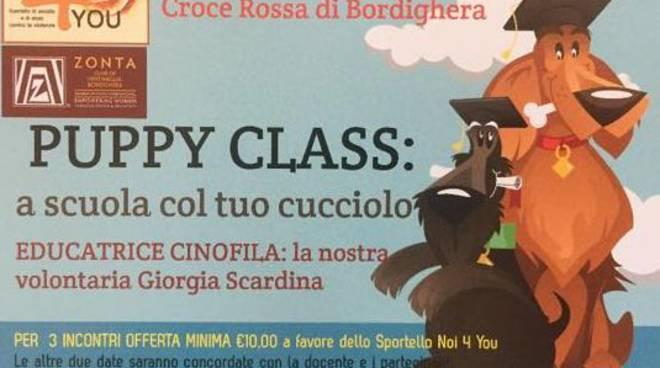 "riviera24 - ""Puppy Class"""