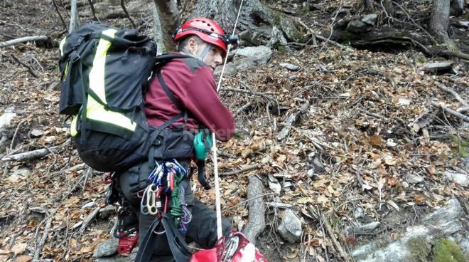 riviera24 - cane da caccia  vigili del fuoco