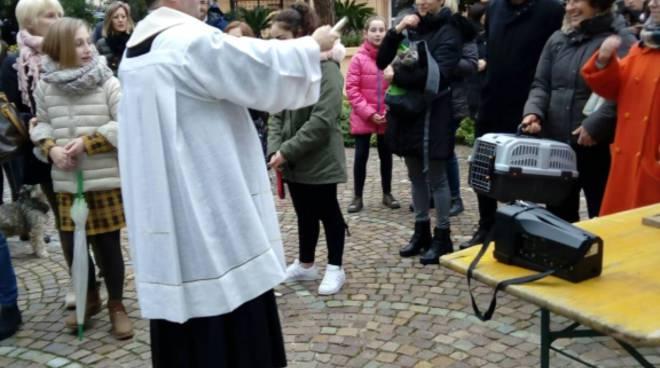 riviera24 -  Benedizione degli animali a Vallecrosia