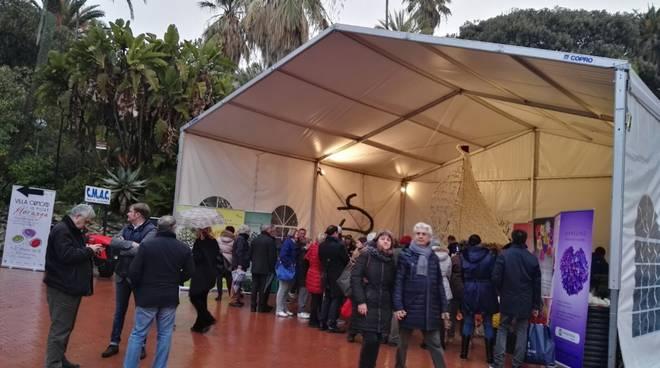 Riviera24- Sanremo in Fiore