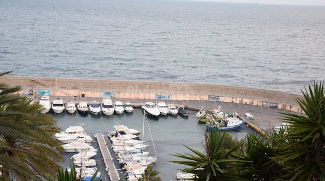 velella porto di Bordighera