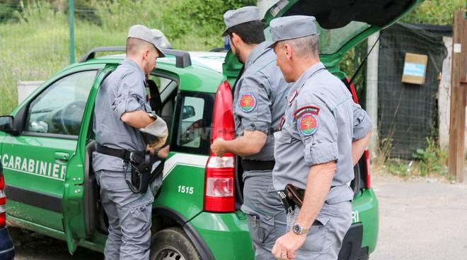 riviera24-blitz carabinieri forestali discarica camporosso
