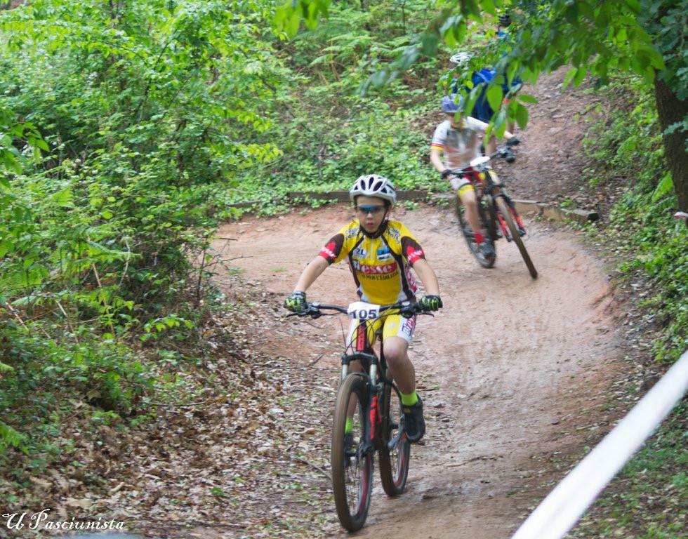 riviera24 - Ciclistica Armataggia