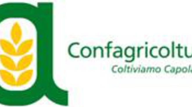 Ventimiglia. Si svolgerà il 25 giugno dalle 9.30 alle 16.30 presso l'Azienda Agricola NIRP International,...
