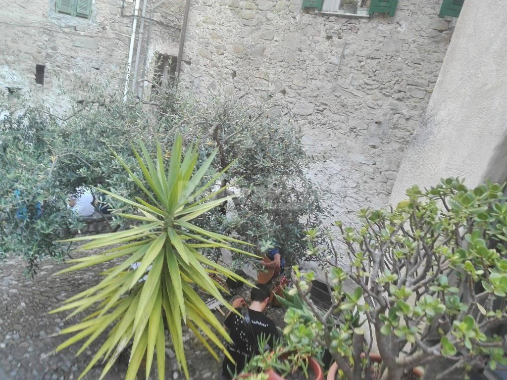 riviera24 - Ape in fiore 2018 a Vallebona