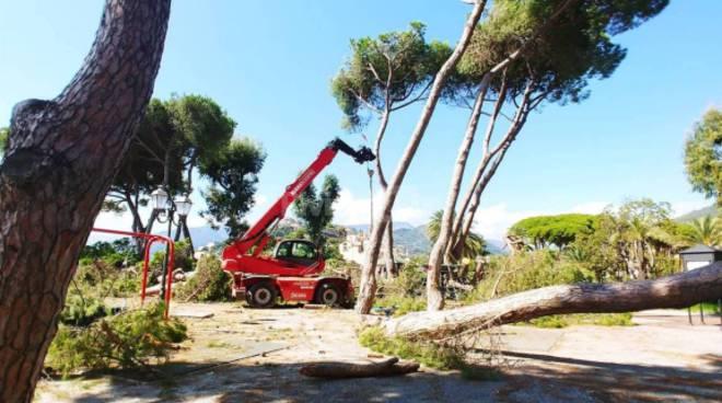 riviera24 - Giardini Tommaso Reggio Ventimiglia