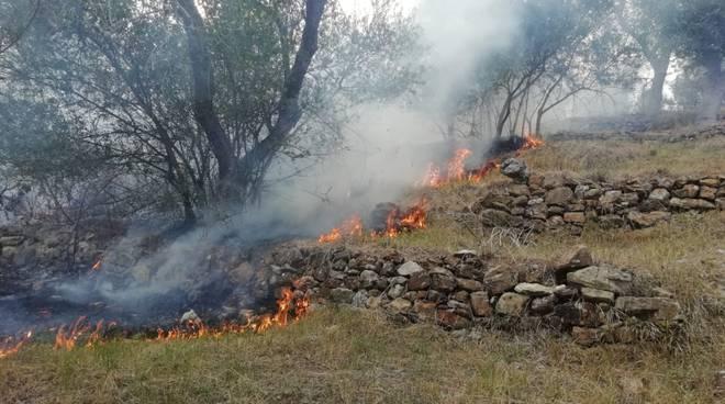 riviera24- incendio costa d'oneglia