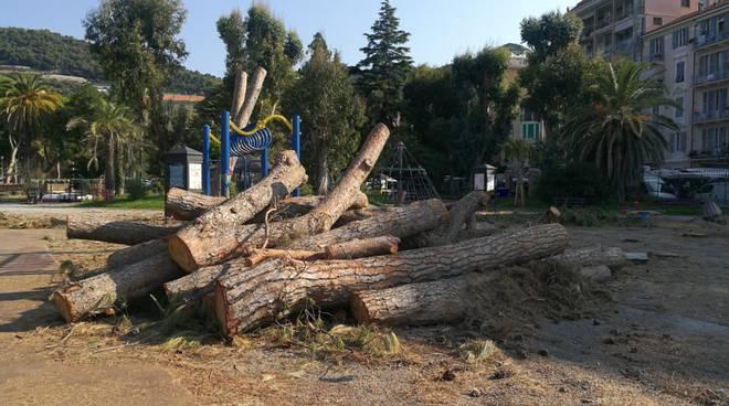 Riviera24- pini giardini Reggio