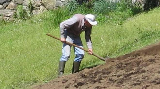 riviera24 - Pensionati agricoli
