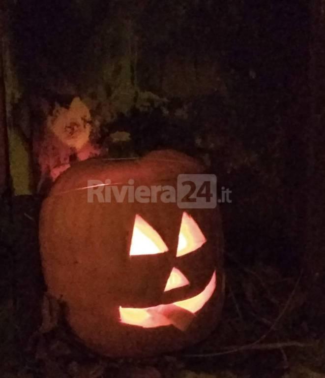 riviera24 - Babacce Rezzo