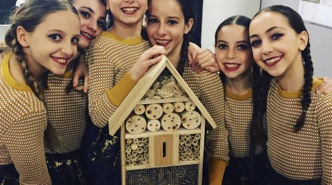 riviera24 -Scuola di danza Dance in Motion