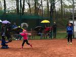 riviera24 -  Sanremese Softball under 12