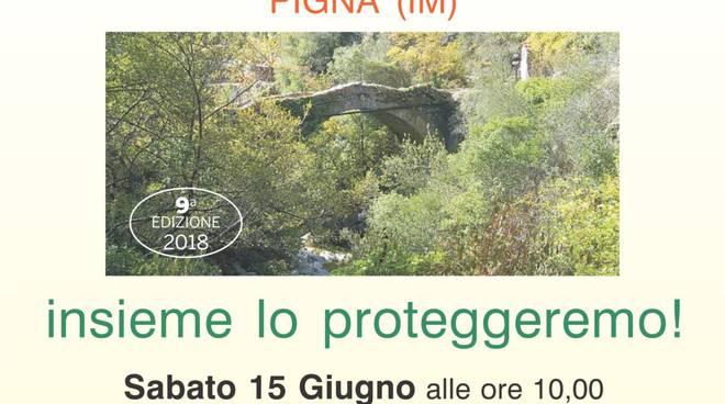riviera24 -  Ponte sul Rio Carne