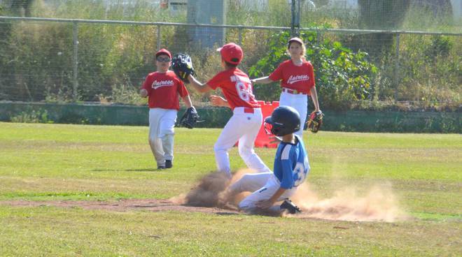 riviera24 - Sanremo Baseball