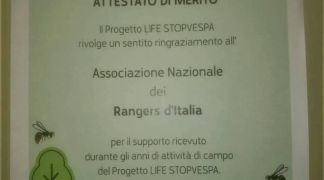 Riviera24- Progetto Europeo Life Stopvespa