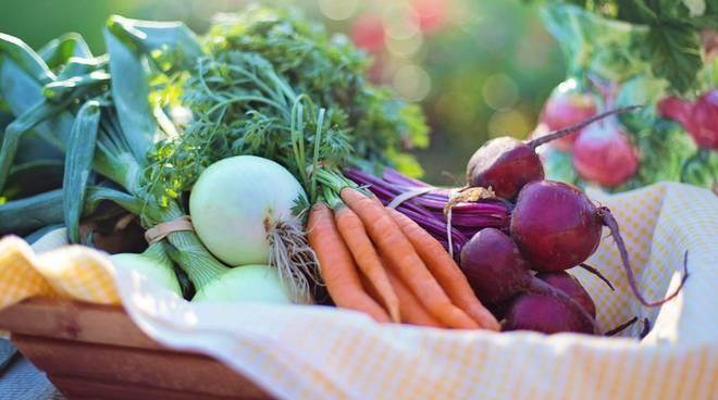 riviera24 - prodotti agricoli ortofrutta verdure ortaggi