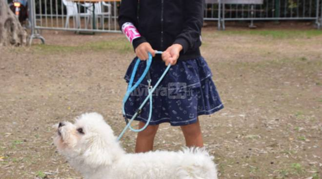Bordighera Dog Show