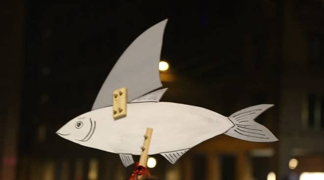 riviera24 - sardine
