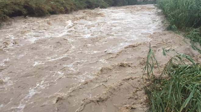 riviera24 - torrente armea