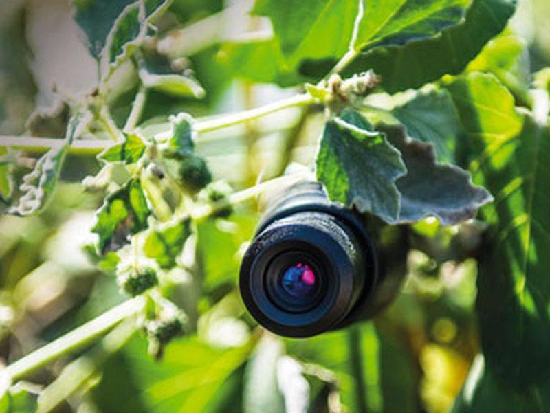 riviera24 - telecamera