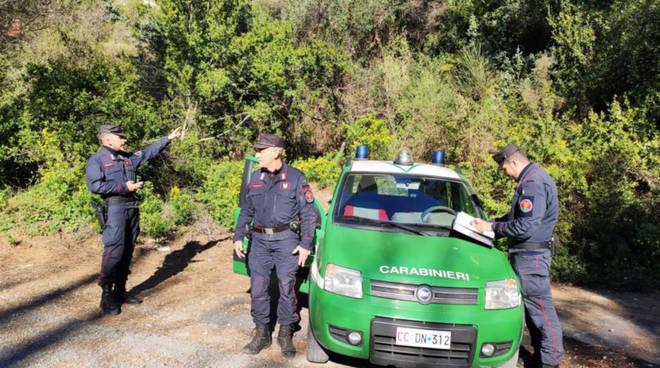 riviera24 - carabinieri forestali