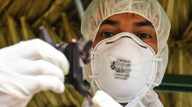 Riviera24- dottori coronavirus mascherina