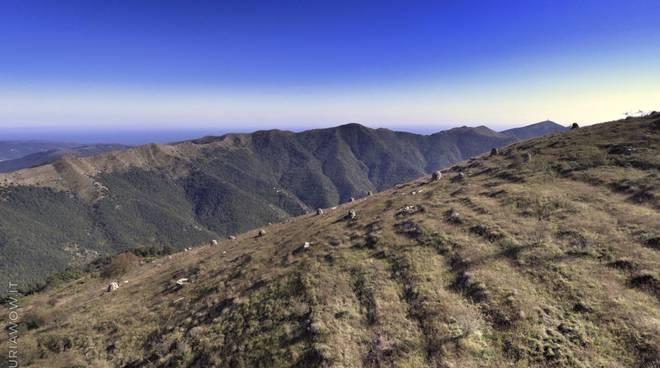 riviera24 - Piloni dell'Alpe di Baudo