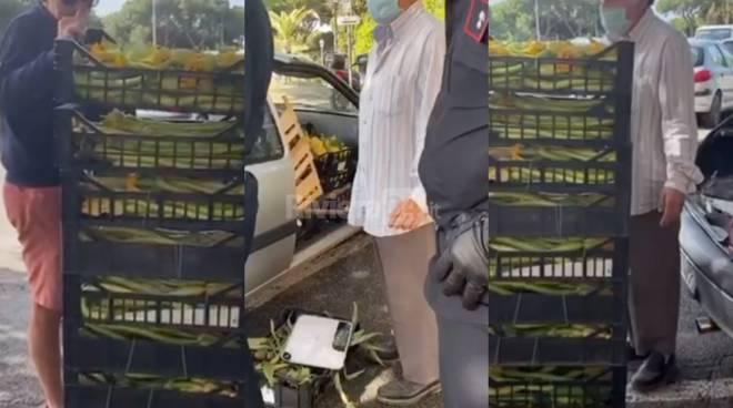 ladro frutta verdura bordighera vallecrosia