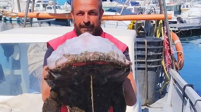 """riviera24 - Federico """"salpa"""" una coda di rospo da 30 chili"""