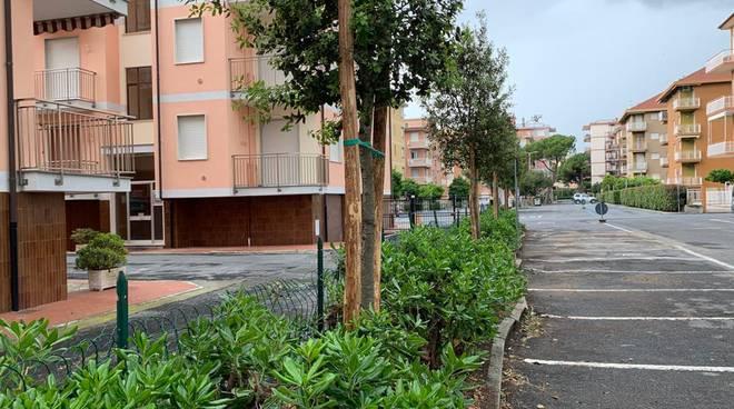 Riviera24- Lecci San Bartolomeo