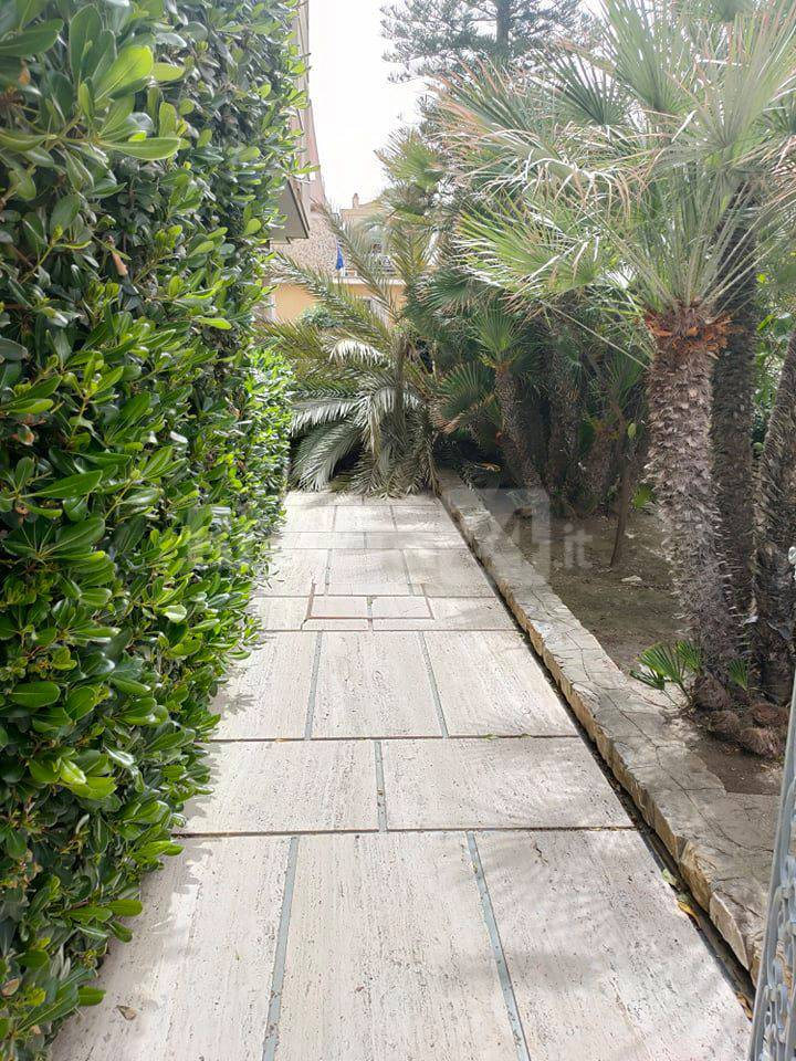 Riviera24- palma crollata bordighera