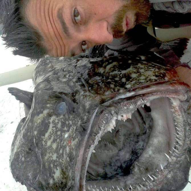 riviera24 - pesce federico marino
