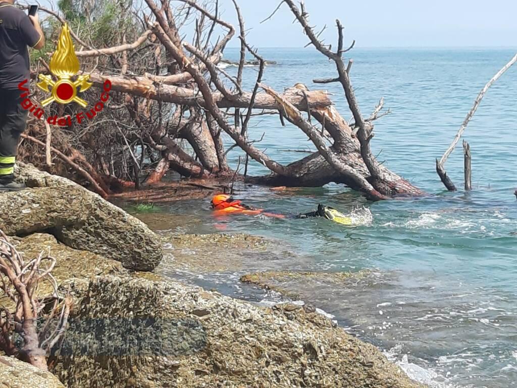 albero crollato spiaggia latte