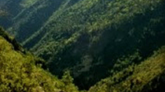 Pinnacolo del  Monte Abelio