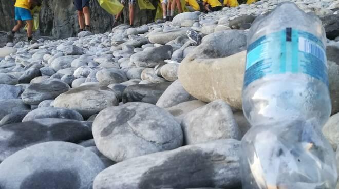 riviera24 - Pulizia spiaggia