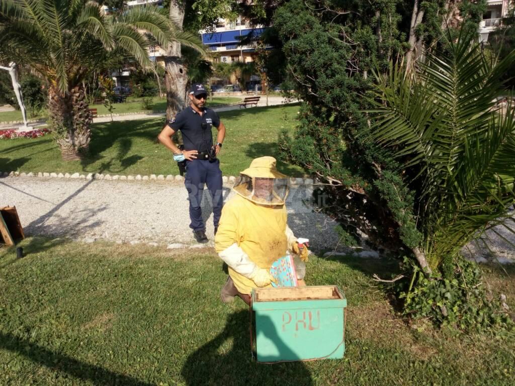 sciame api ventimiglia