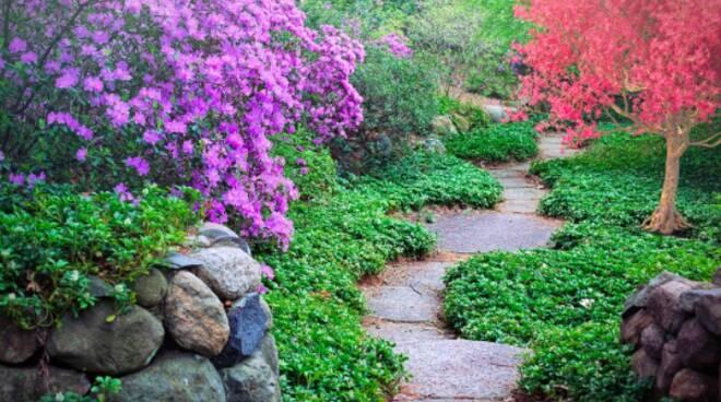 Riviera24- giardino generica