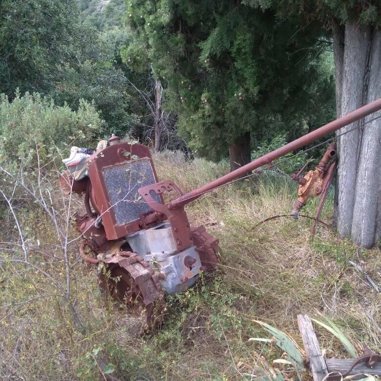 riviera24 - Discarica abusiva nel bosco, lo scempio a Isolabona