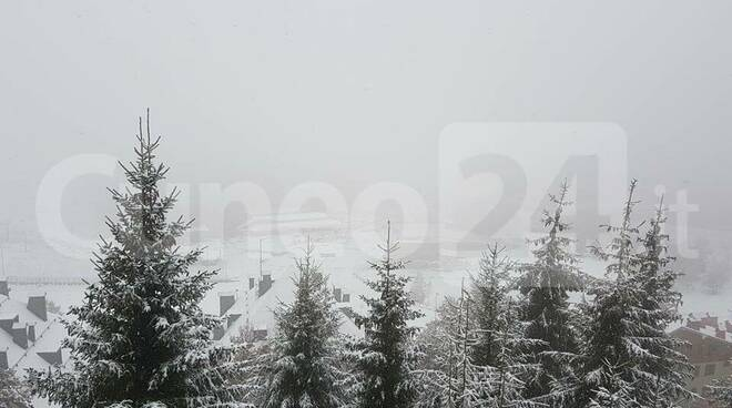 nevicata artesina prato