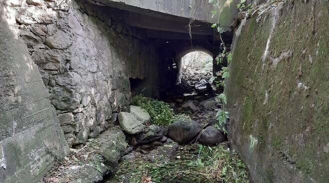 """Rifiuti su statale 20 """"del Colle di Tenda e di Valle Roja"""""""
