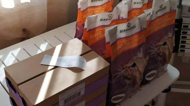riviera24 - Donazione gattile Ventimiglia