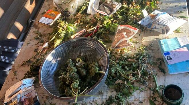 riviera24 - marijuana polizia