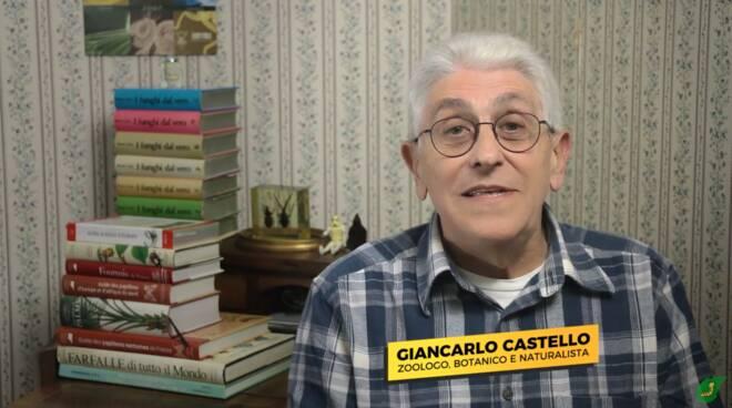Giancarlo Castello