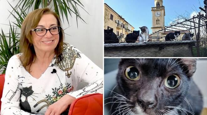 intervista Stefania tribù gatti